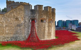 Tower of London Poppies6