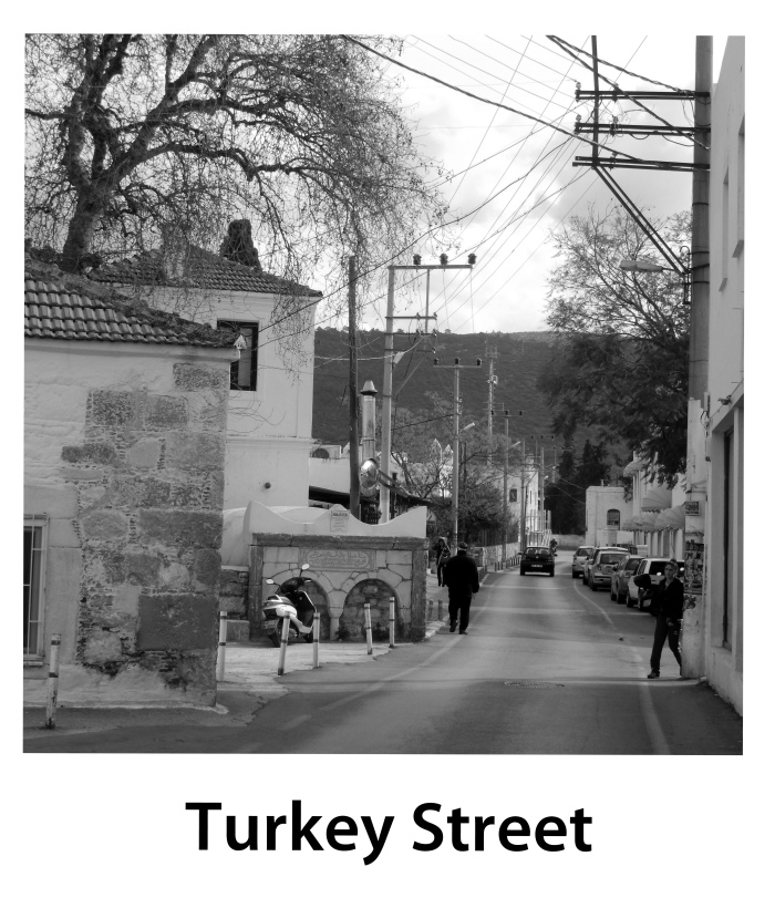 Turkey St