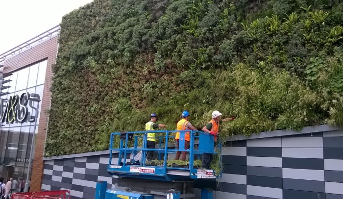 M&S Norwich Vertical Garden