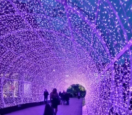 Tunnel of Light